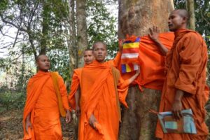 The Ordination of Trees